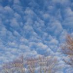 Blue skies. . .