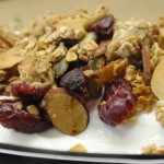 Cranberry Granola Yogurt