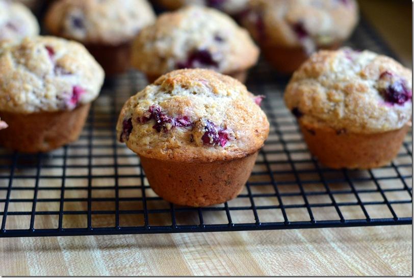 cran muffin 005