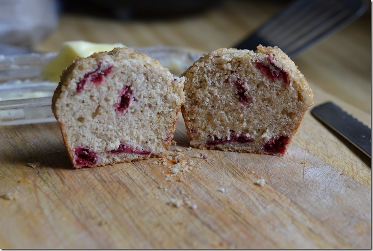 cran muffin 018